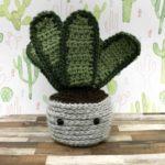 cactus-amigurumi-square