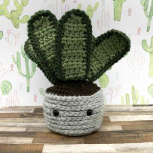 photo of crochet snake plant
